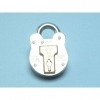 Squire Old English Steel Case Padlock